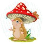 Лесной зонтик